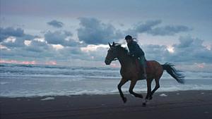 woman riding a horse at the beach
